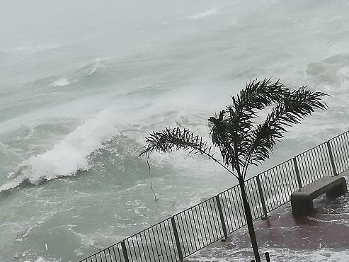 """Le typhon Mangkhut sème le chaos à Hong Kong où se trouve Didier, qui a filmé la scène: """"Arbres arrachés, routes inondées, vitres brisées..."""""""