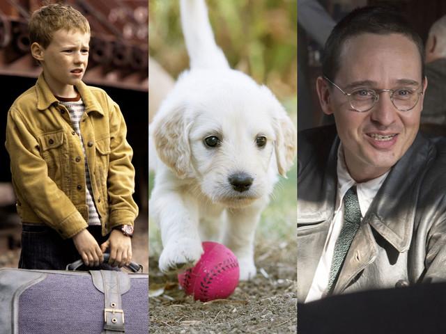 A la télé ce soir : L'extravagant voyage du jeune et prodigieux T.S. Spivet, Une vie de chiot, Brecht sont dans le top 3 de Télé Star