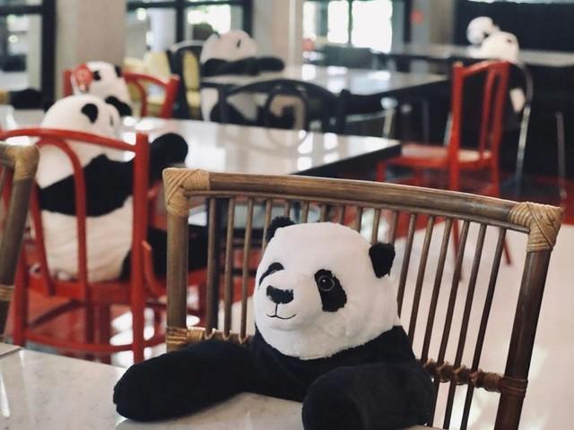 Des peluches de panda pour faire respecter la distanciation dans ce restaurant au Vietnam