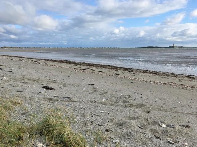 Un moteur de bateau retrouvé sur une plage du Cotentin conduit à l'interpellation de plusieurs voleurs