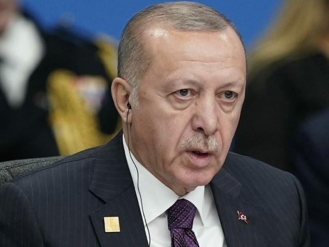 La Turquie renvoie onze présumés jihadistes français