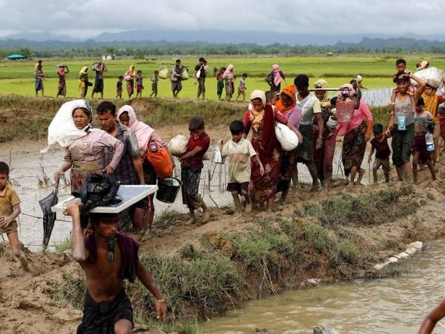 Éditorial. Les Rohingyas en proie à la haine