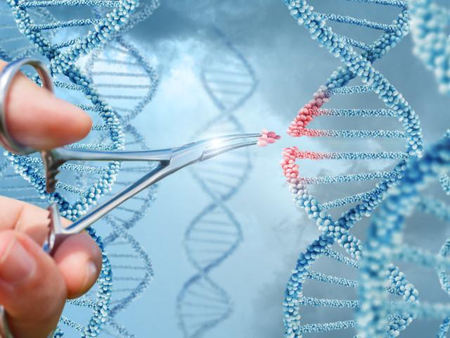 États généraux de la bioéthique: oubliez la PMA, voici LE débat à surveiller