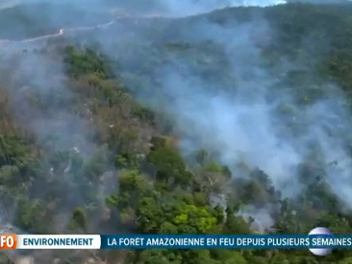 Les incendies qui ravagent la forêt amazonienne ne sont pas dus à la sécheresse, mais bien à la DÉFORESTATION
