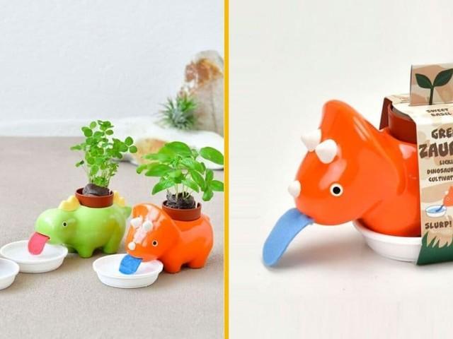 [TOPITRUC] Des petits dinosaures pour faire pousser tes plantes