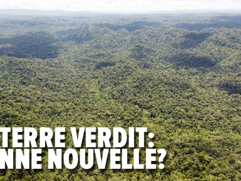 """La Terre devient plus verte et c'est grâce à deux gros pollueurs: comment l'Inde et la Chine sont-ils en train de """"végétaliser"""" notre planète?"""