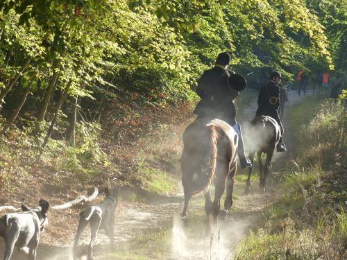 Un arrêté pour freiner les anti-chasse dans les forêts du Compiègnois