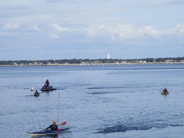 Bassin d'Arcachon : la Transostréa est annulée en raison de la météo