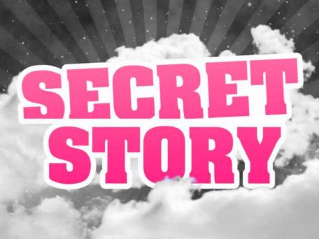 Attentats à Paris : Secret Story s'achève dans la discrétion