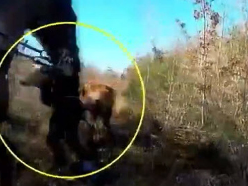Un humoriste français interpelle Macron avec une vidéo choc sur la chasse