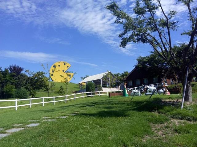Un parc dédié au fromage a ouvert ses portes en Corée !