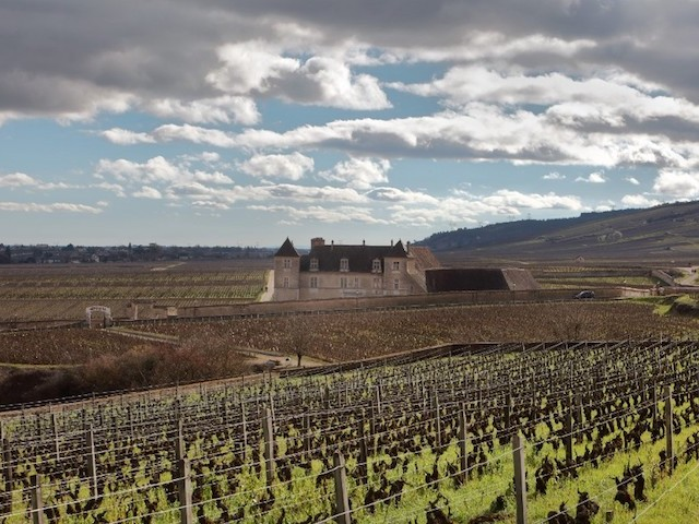 Le combat des vignobles bourguignons contre le projet de déplacement de l'appellation Bourgogne... en Beaujolais