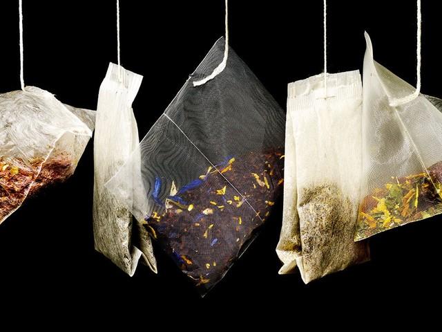 Thé vert, thé noir, thé blanc… Tous proviennent d'une seule et même espèce d'arbuste