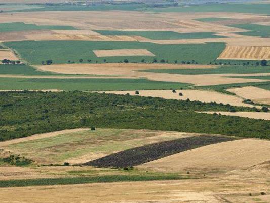 Domaines de l'Etat : récupération de 548 hectares à Béja.