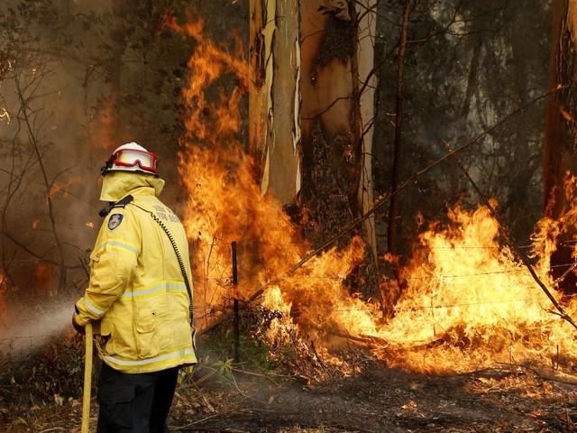 Des feux de brousse «incroyablement dangereux»: 600 écoles restent portes fermées en Australie!