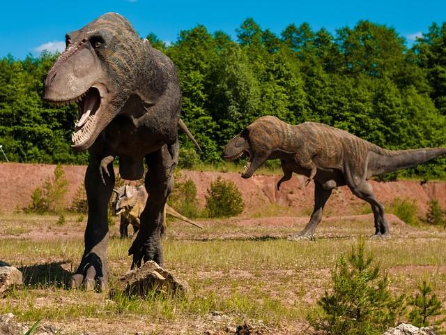 Faites connaissance avec le Gnathovorax cabreirai, l'équivalent du T-Rex en son temps