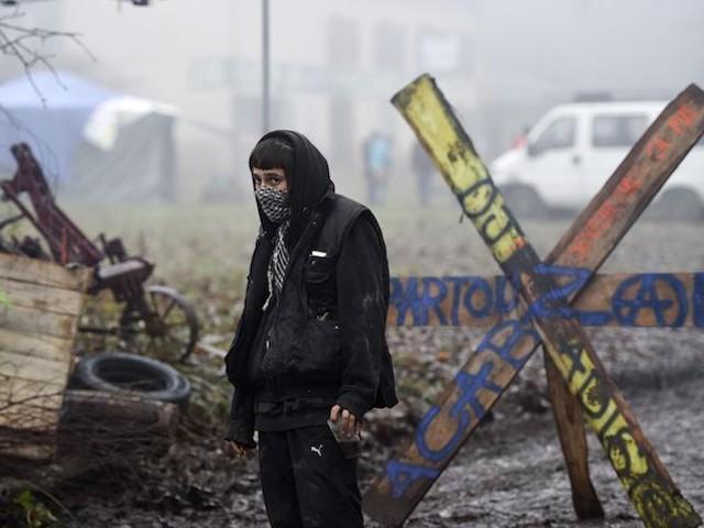 Après la fin de la ZAD de Roybon, le grand déclin des Zones à défendre