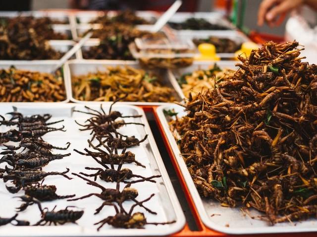 Pourquoi les insectes ne sont-ils toujours pas dans nos assiettes?