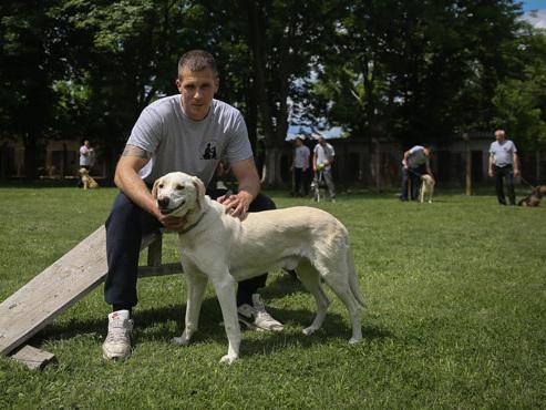 """""""Le meilleur programme de réinsertion au monde"""" en Serbie: des prisonniers s'occupent de chiens errants"""