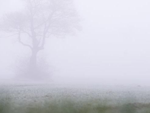 Prévisions météo: du froid, du vent et beaucoup de brouillard pour le reste de la semaine
