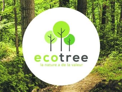 EcoTree lève 3 millions d'euros pour faire croître ses forêts