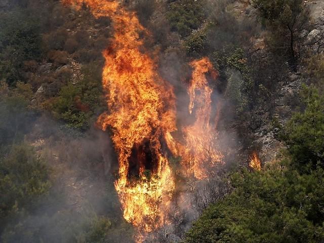 Vague d'incendies en Syrie et au Liban qui appelle ses voisins à l'aide