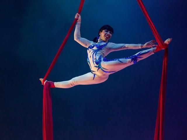 Le cirque Medrano pose son chapiteau sur le Champ de foire, au Havre