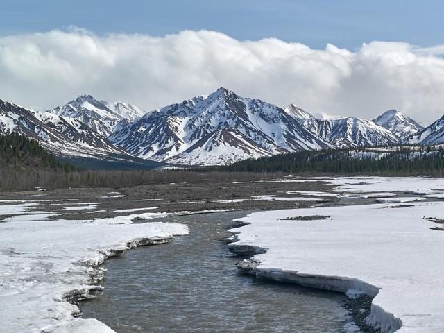 """Alaska : elle meurt en tentant d'atteindre le mythique bus du film """"Into the wild"""""""
