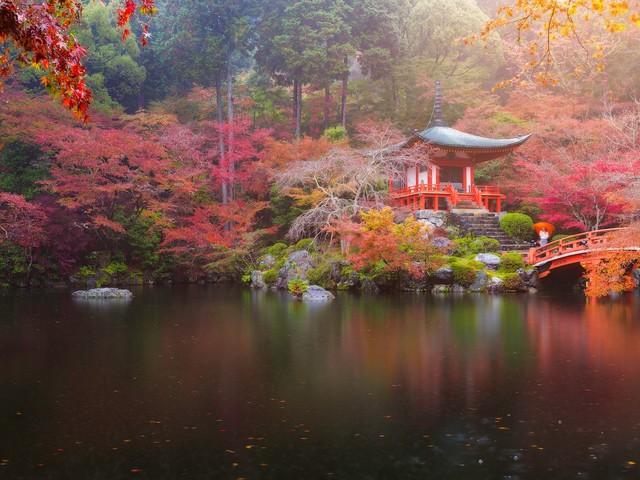 Tsukimi, la fête de la mi-automne au Japon