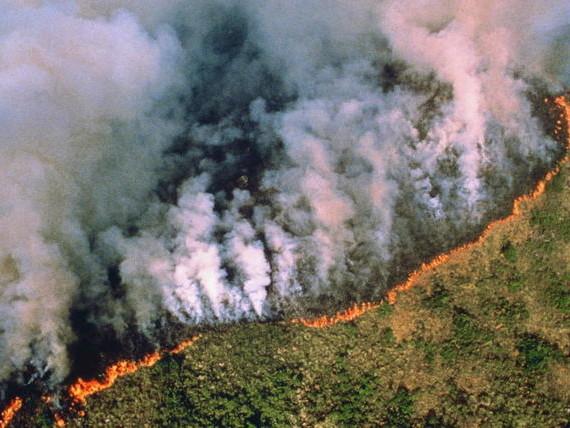 Brève - Incendies en Amazonie : responsabilités et exploitation politicienne