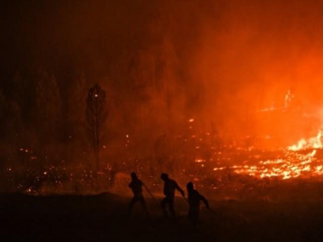 Le Portugal peine à maîtriser les feux de forêt