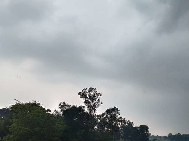 Weather Update: दिल्ली, यूपी, बिहार समेत इन राज्यों में भारी बारिश की संभावना, जानें- मौसम का ताजा अपडेट
