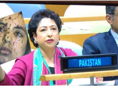 Pakistan lies at UN, then wants it to declare India 'terror sponsor'?