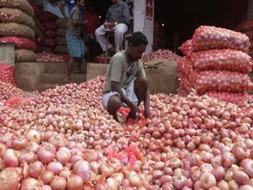 कीमत बढ़ने पर सरकार का खुलासा, प्याज के उत्पादन में 30-40 फीसदी की गिरावट