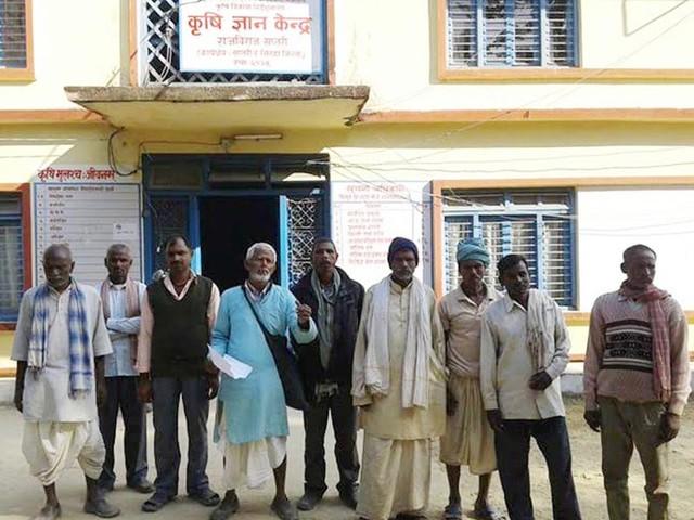 Wheat seed crunch hits Saptari farmers