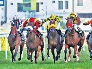 Electricity poise to complete hat-trick of wins