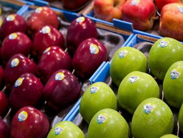 ट्रेडर्स ने कहा- सिर्फ इंपोर्टेड सेबों पर होती है वैक्स कोटिंग, सरकार खुद देती है क्लीयरेंस
