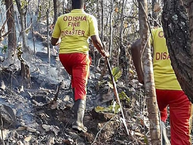 Odisha government constitutes task force after Similipal forest fire incident