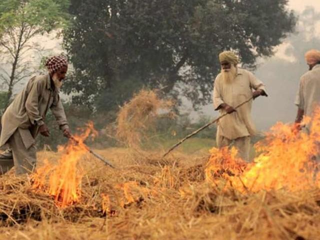 इंसानों की ही नहीं, खेतों की सेहत के लिए भी बेहद घातक साबित हो रहा पराली जलाना