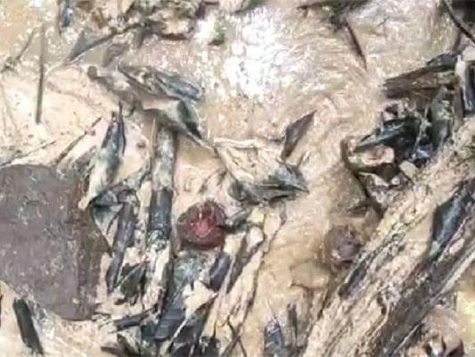 സോയില് പൈപ്പിംഗ്: പത്ത് കുടുംബങ്ങളെ മാറ്റിപ്പാര്പ്പിച്ചു