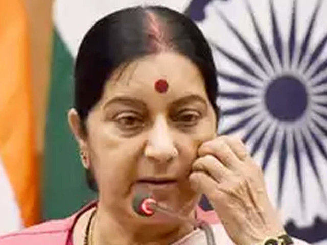 Sushma Swaraj holds talks with counterpart from Iceland