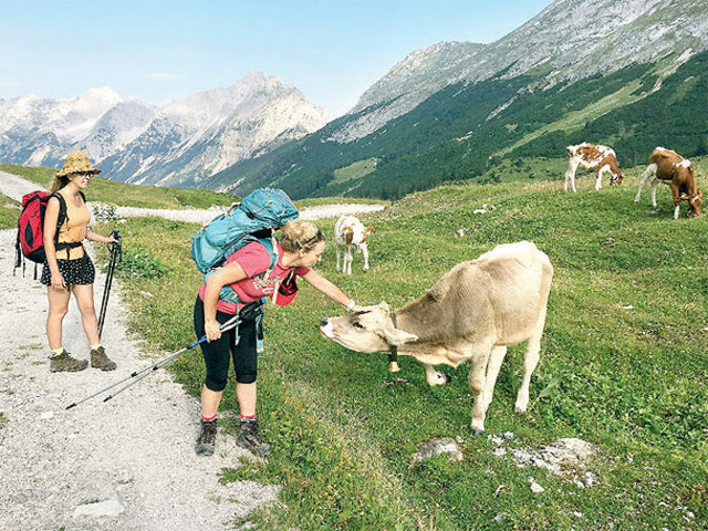 Reboot happiness! Take your family on a hike trip to Austria's Karwendel Mountains