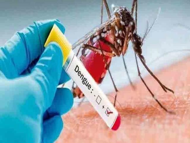 डेंगू के रोकथाम और नियंत्रण को लेकर केंद्र सरकार ने राज्यों और केंद्रशासित प्रदेशों को लिखा पत्र