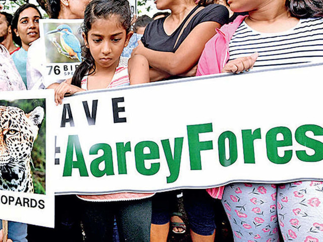 Supreme Court ban on tree felling continues, no stay on metro work in Aarey