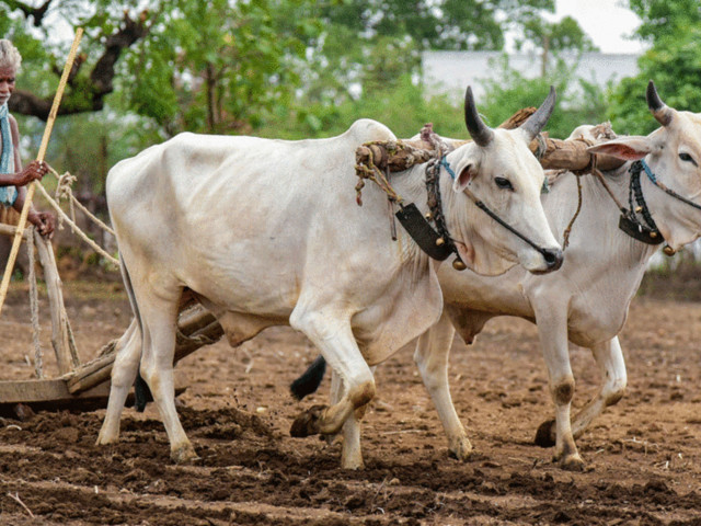 Everything you need to know about the new agriculture bills passed in Lok Sabha