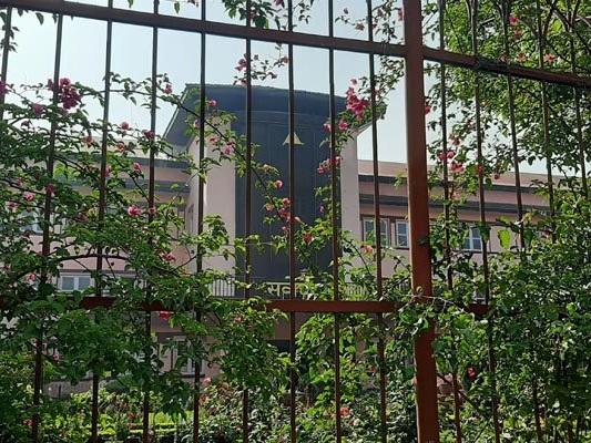 Govt bodies defy apex court directives