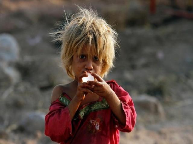 Climate change aggravates global hunger: UN
