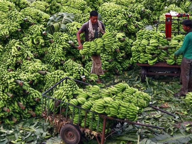 कृषि क्षेत्र में रोजगार सृजन का साधन बनेगा इन्फ्रा फंड, जानें कैसे ग्रामीण क्षेत्रों में देगा आर्थिक विकास को रफ्तार