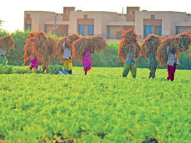 Maharashtra to pay 5 times for agricultural & non-rural land