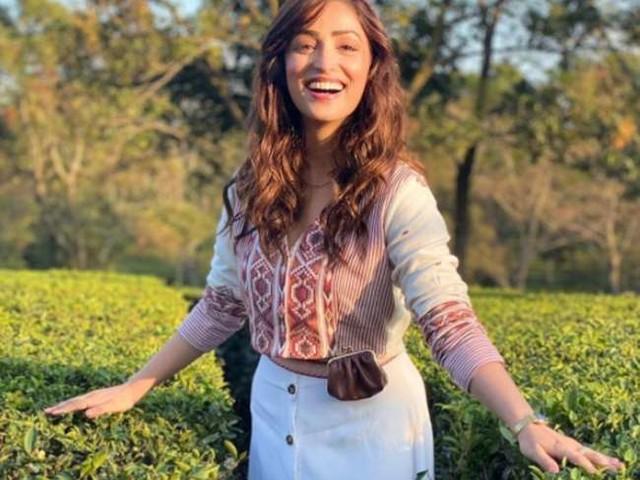 यामी गौतम ने खुद को बताया Tea Lover, चाय के बागान से शेयर की खूबसूरत तस्वीरें